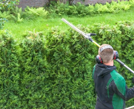 depositphotos_115564842-stock-photo-hedge-cutting-petrol-hedge-trimmer